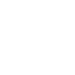 white Rustici dispatch icon